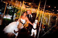 Speiser Wedding      (Side Cut Park and Toledo Zoo)